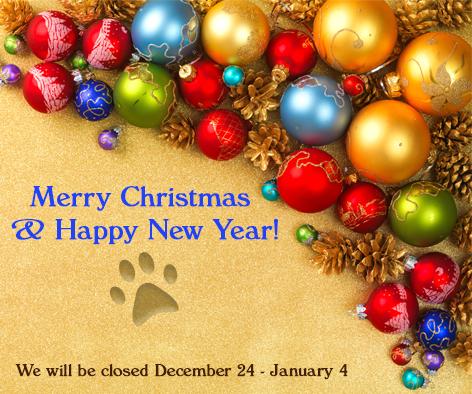Facebook-Holiday-Banner